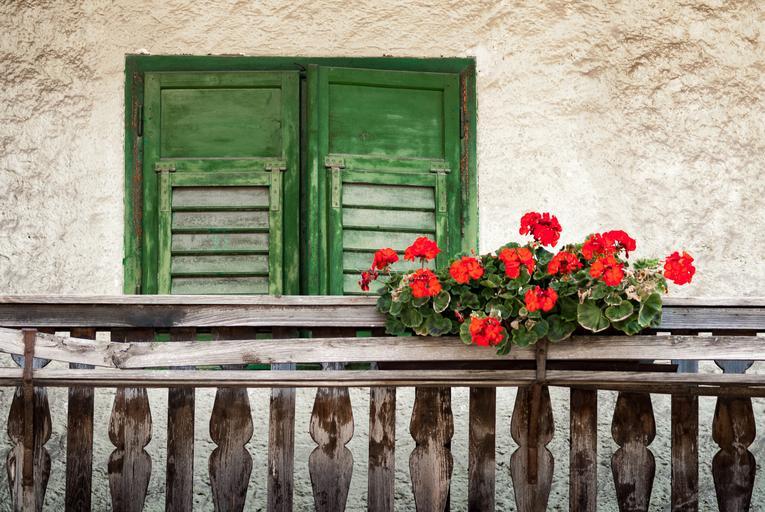balkón s kvetmi.jpg